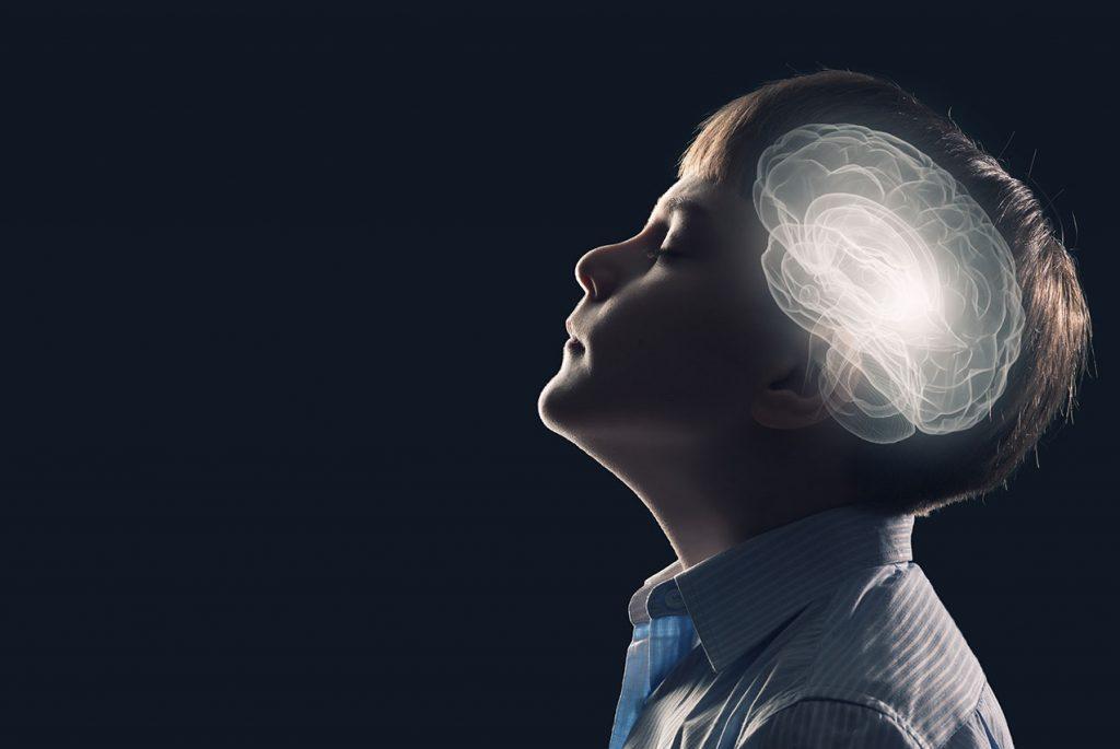 Нейрофизиология впитывающего разума