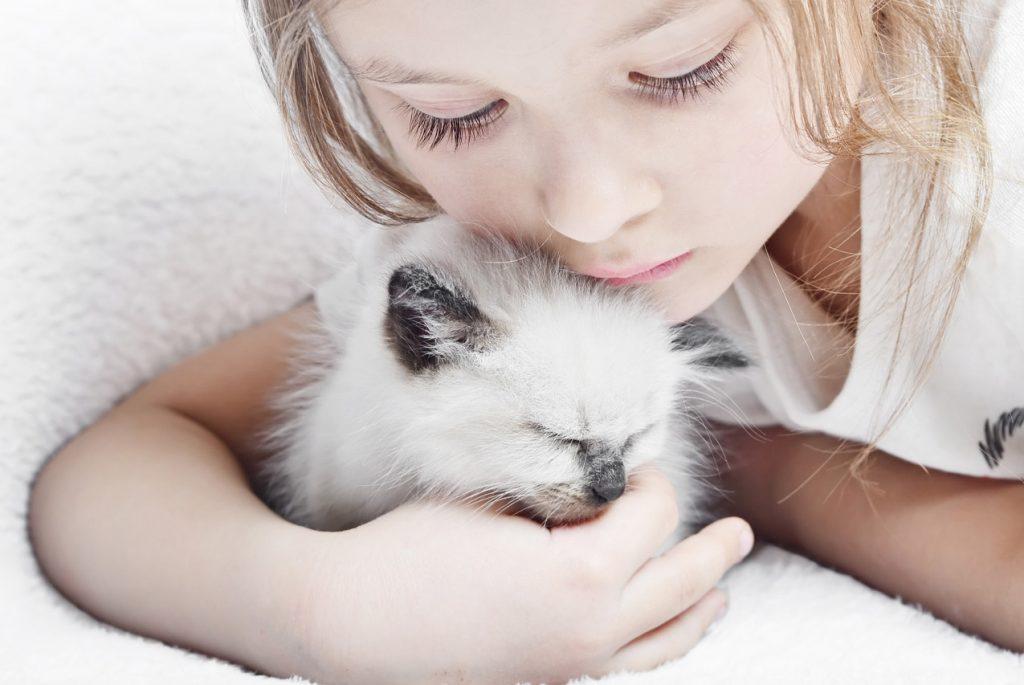 Красивая картинка девочка и котенок