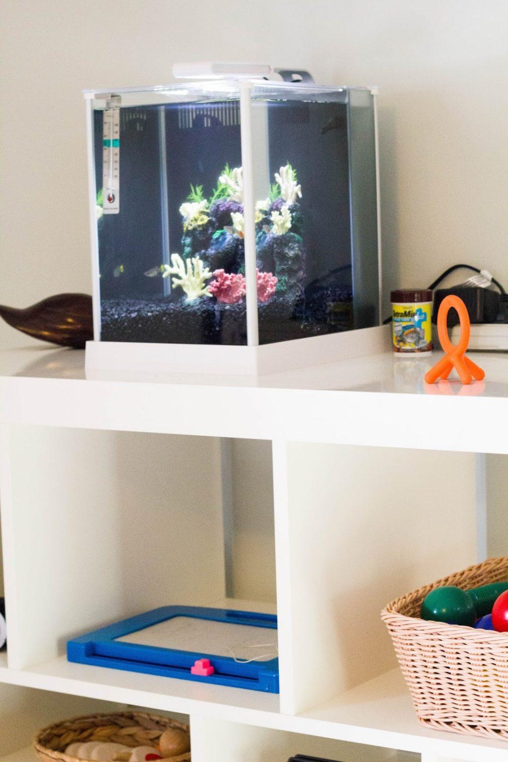 Монтессори-комната для разновозрастных детей фото