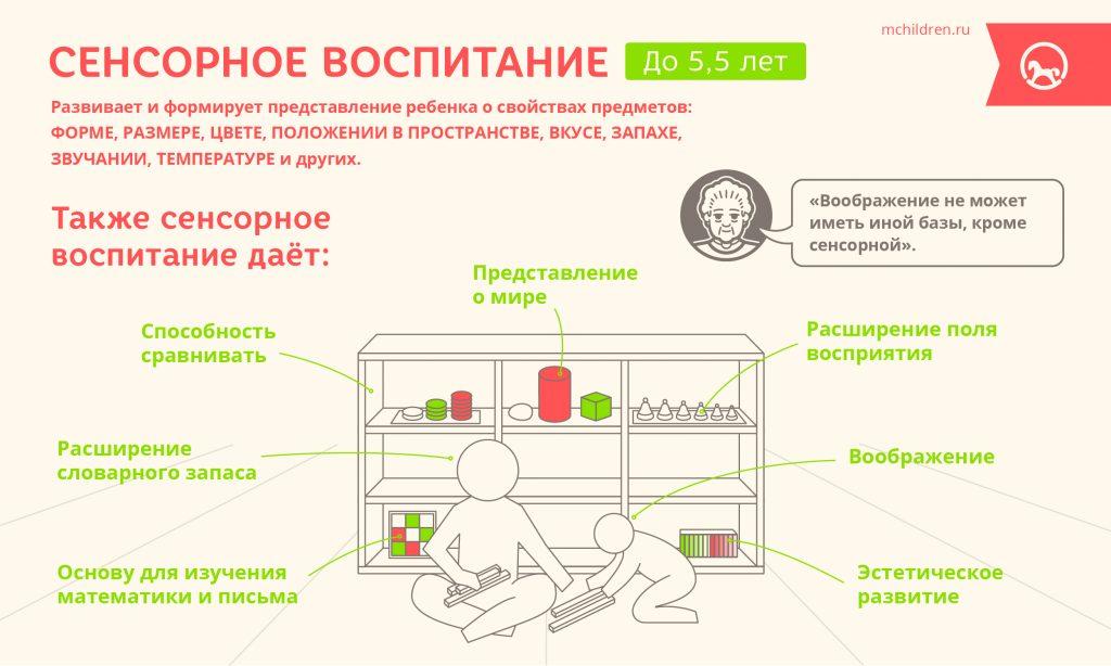 Infogr_14_Sensornoe_vospriyatie-14