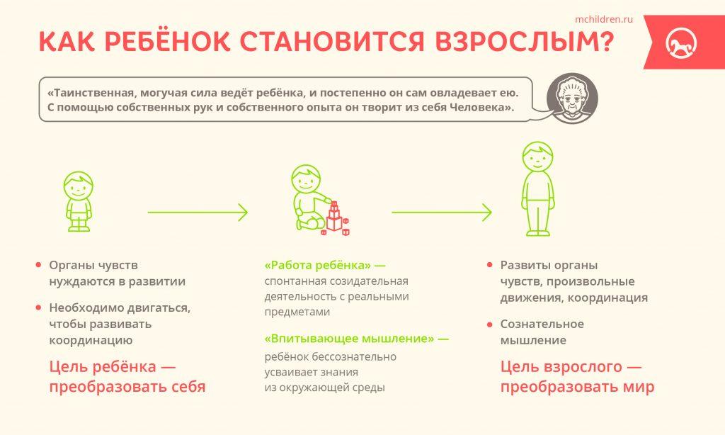 Infogr_30_Kak_rebenok_stanovitsa_vzroslim-30