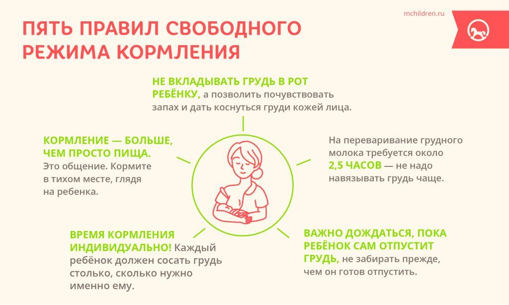 Пять правил свободного режима кормления