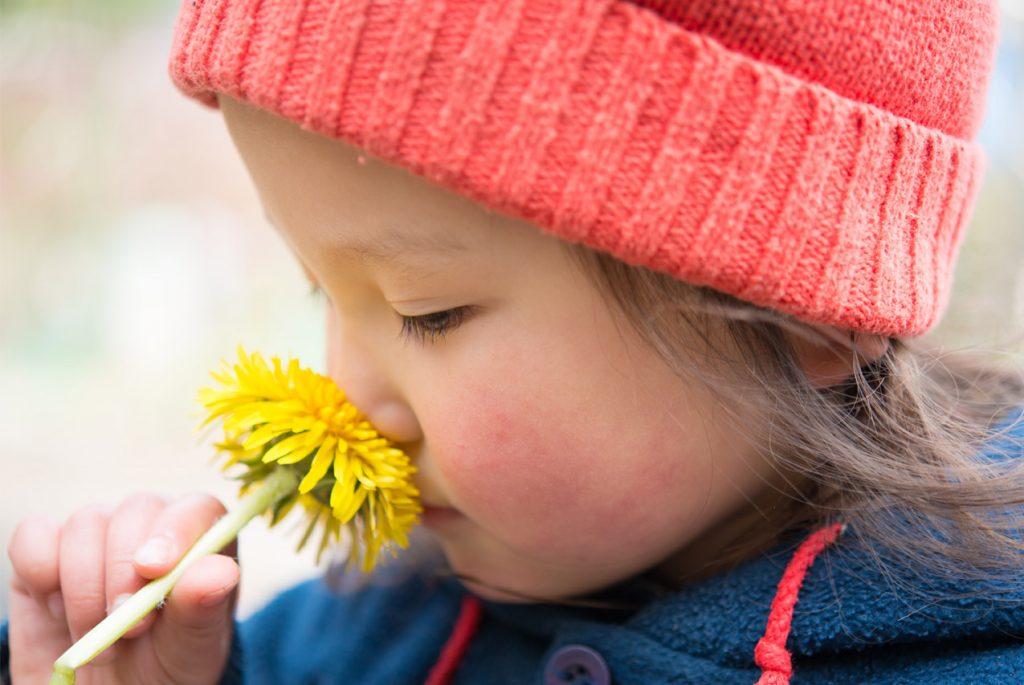 Маленькая девочка нюхает цветок