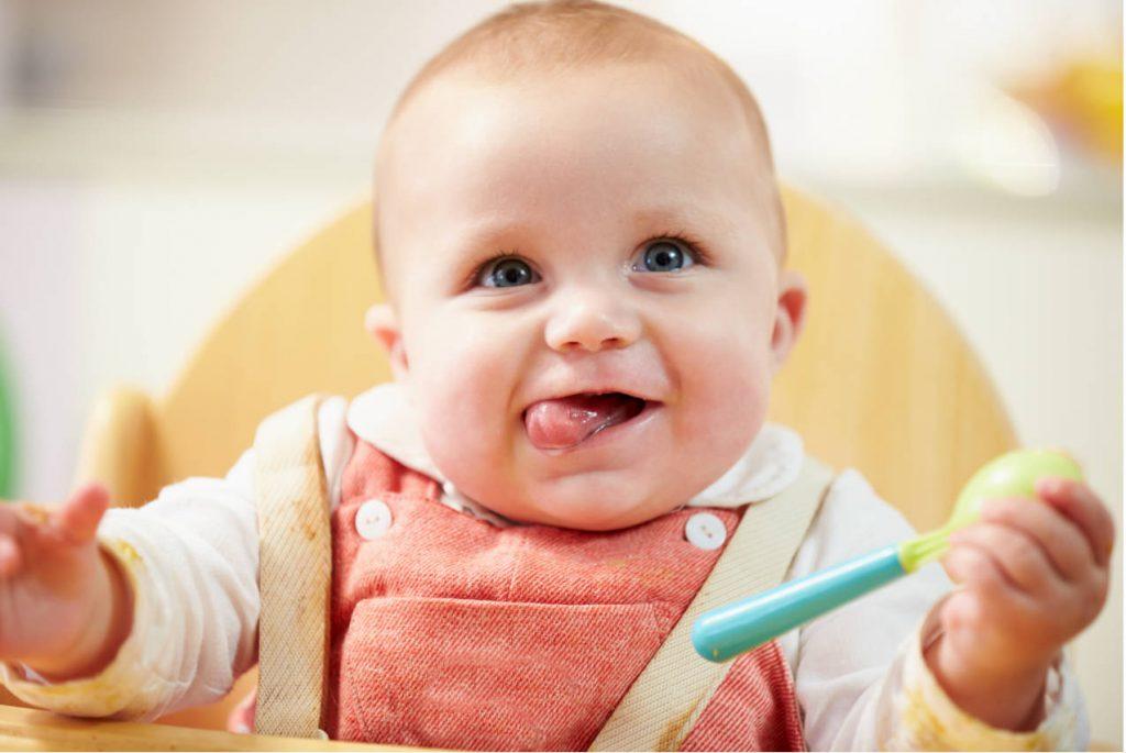Как ввести прикорм и организовать питание малыша