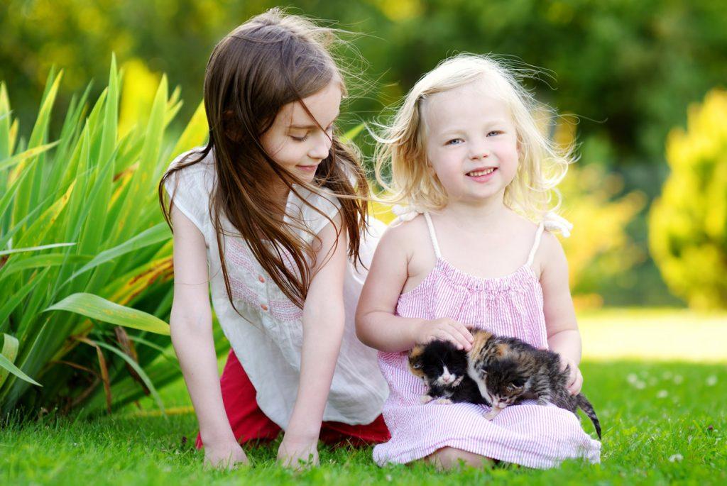 Формирование эмпатии у детей