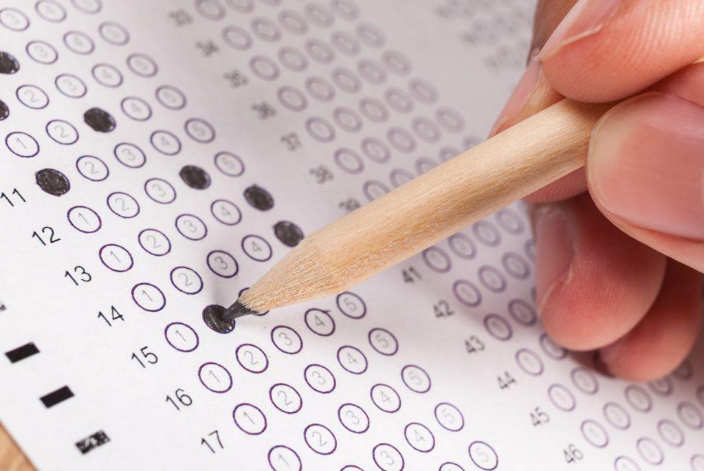 Как тестируют Монтессори-учеников?