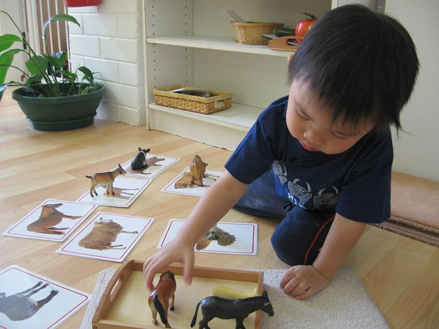 Развивающие занятия для ребёнка 1,5 лет