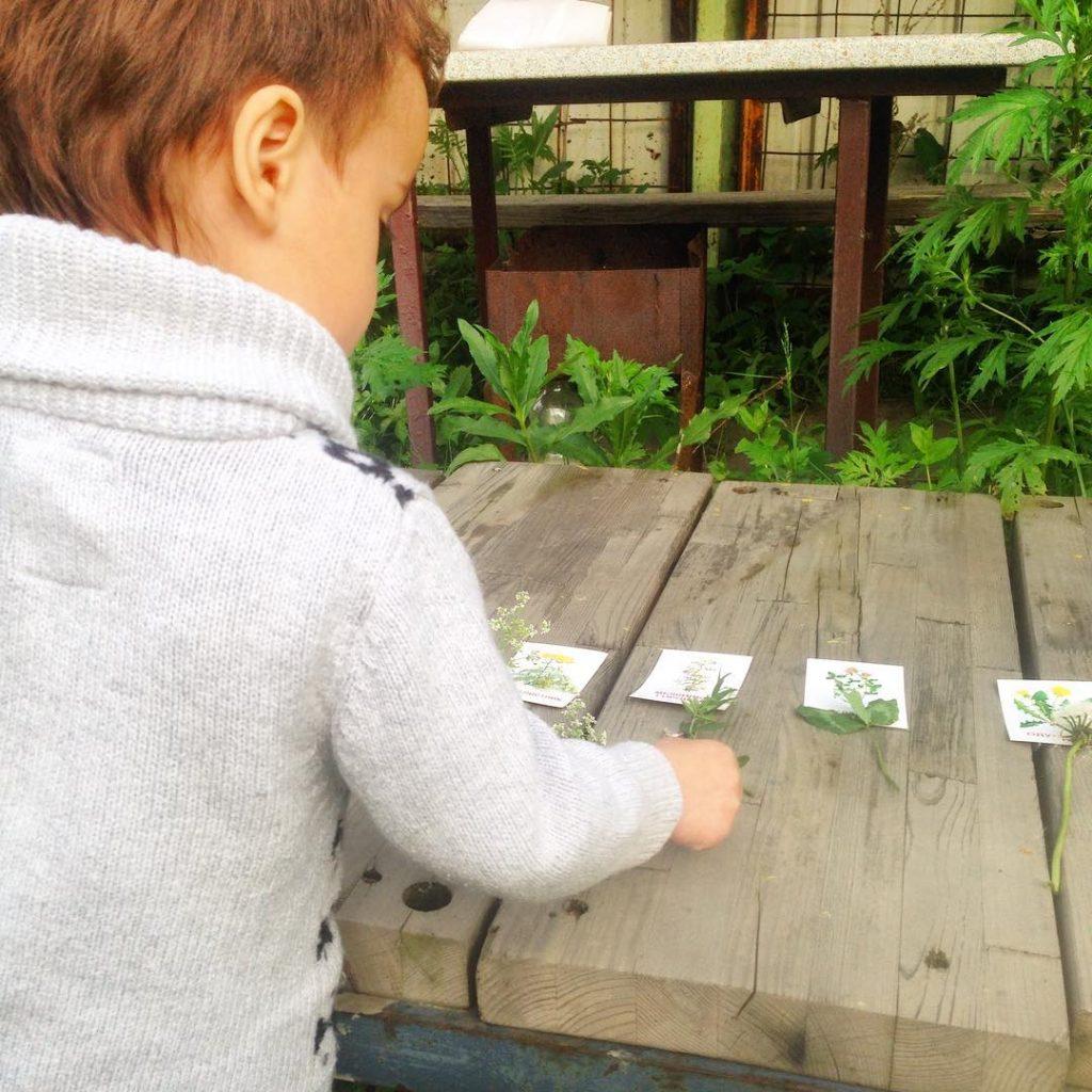 изучать растения