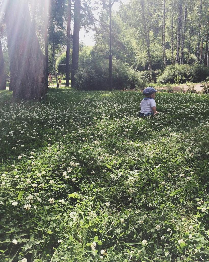 наслаждаться ароматами леса
