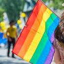 является ли гомосексуальность нормой
