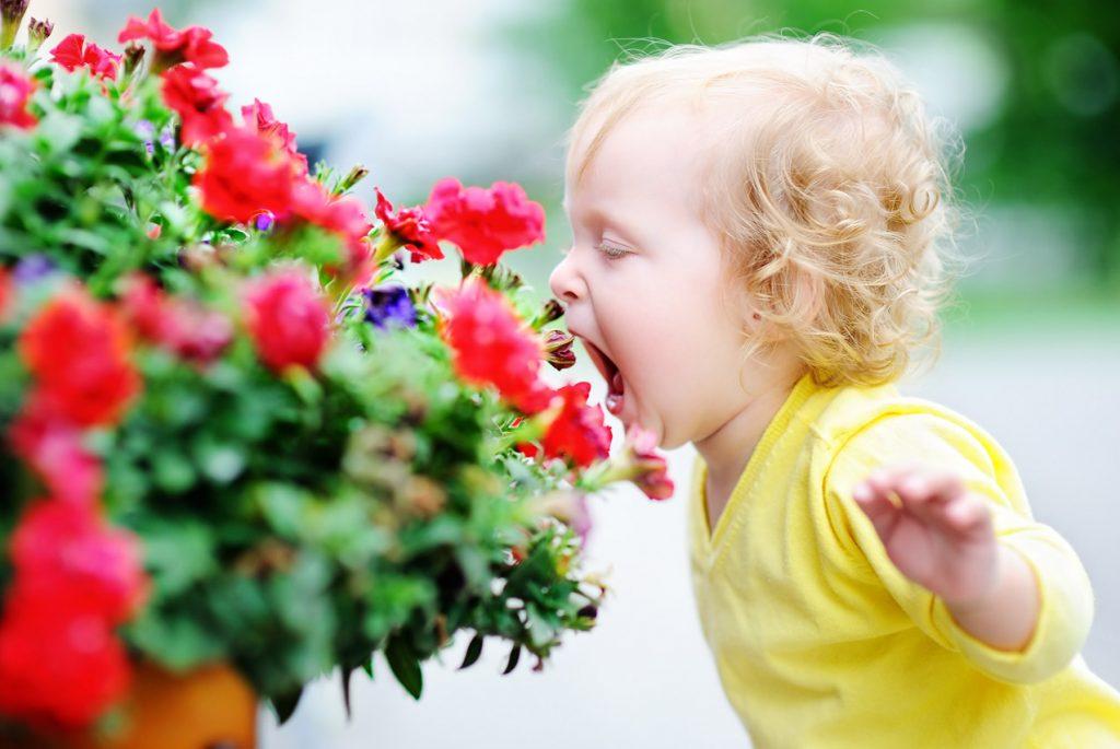 Как объяснить ребёнку правила поведения в обществе?