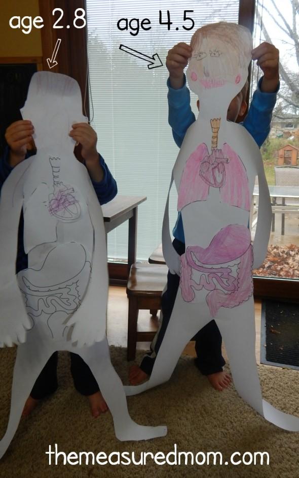 изучение тела человека с ребёнком