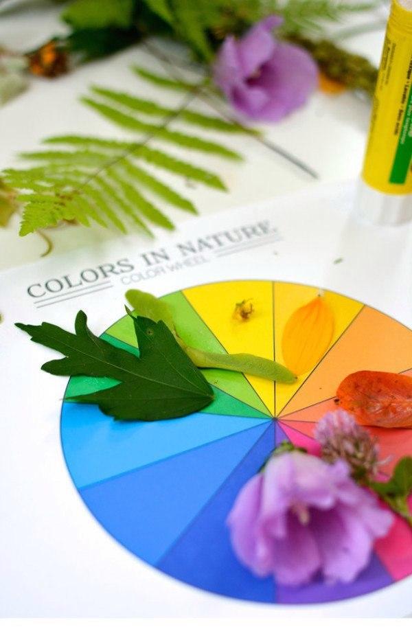 Сортировка природных объектов