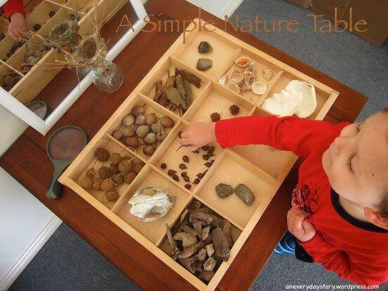 сортировка природных материалов