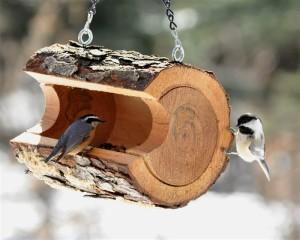 какими должны быть кормушки для птиц