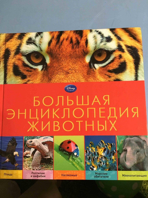 Большая энциклопедия животных обложка