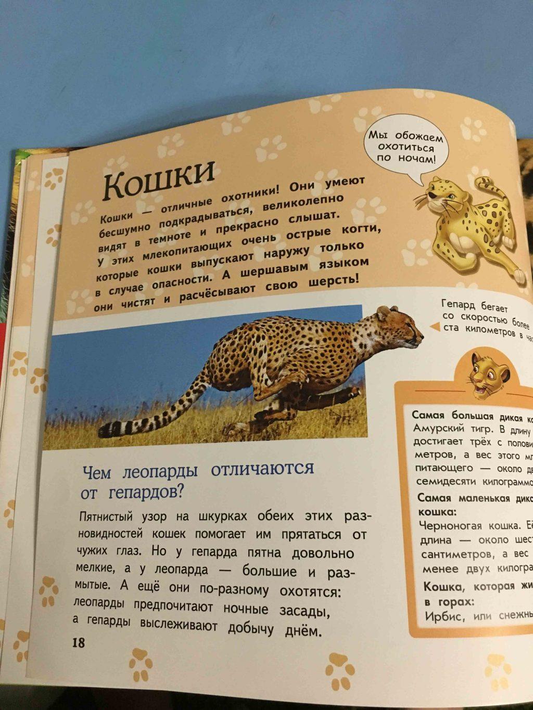 Большая энциклопедия животных страница