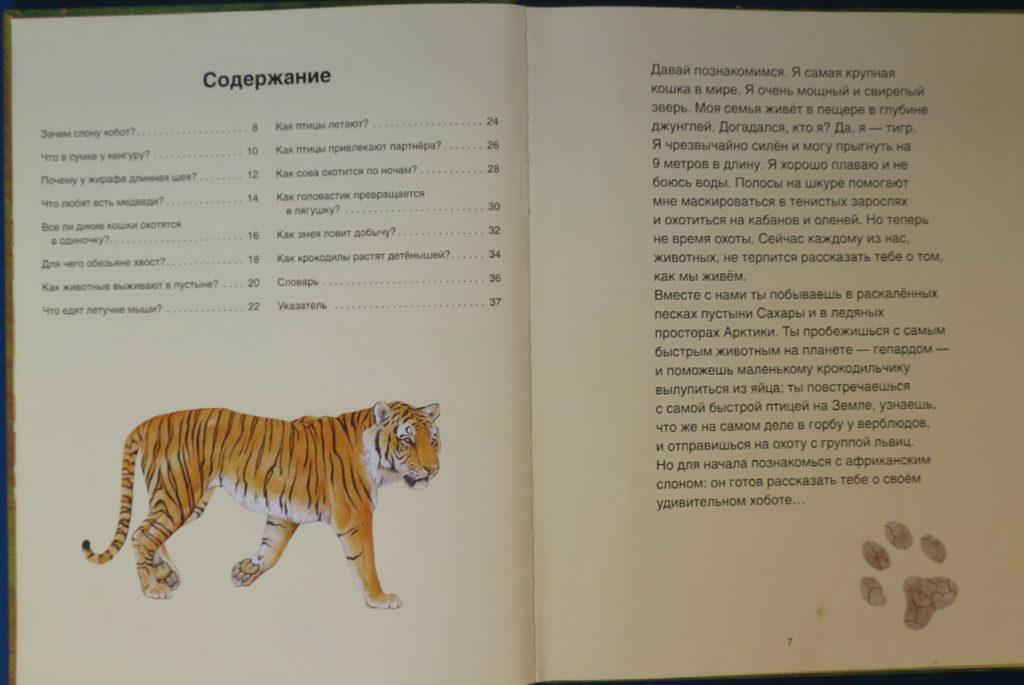 Рецензия на книги серии «Детское справочное бюро»