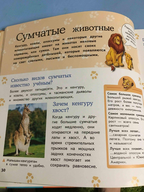 Большая энциклопедия животных отзывы