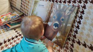 малыш рассматривает книгу