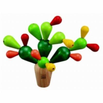 ris-11-kaktus