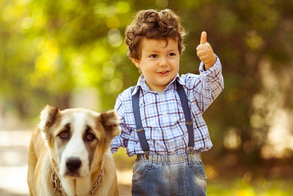 заводить домашних животных ребёнку