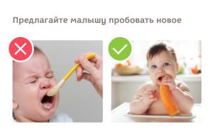 как правильно кормить ребёнка