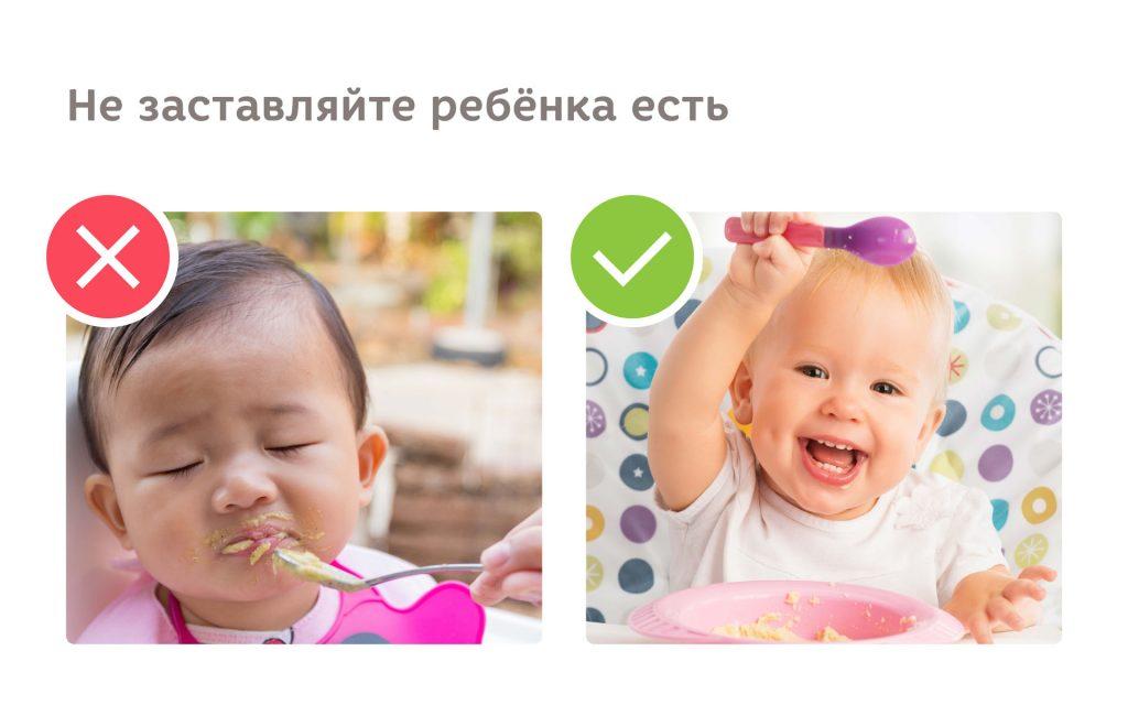 нужно ли заставлять ребёнка есть