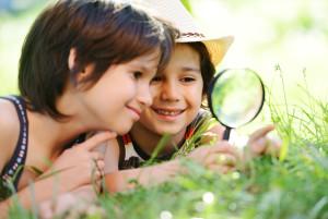 экологическое воспитание в монтессори