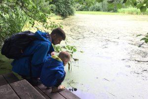 родители воспитывают в ребёнке любовь к природе