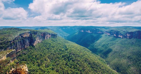 карточки природа австралии