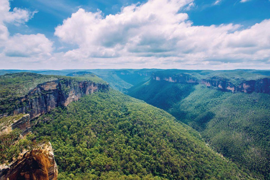 Скачайте карточки для детей по теме «Природа Австралии»