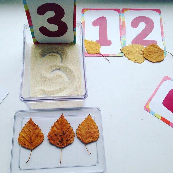 математика с природными материалами