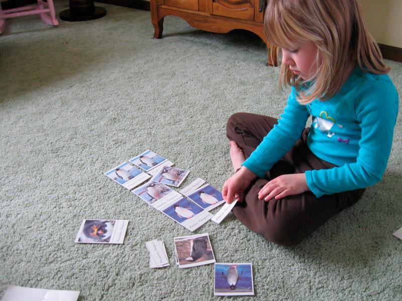 Ребёнок занимается с карточками