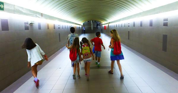 методика организации экскурсий в начальной школе