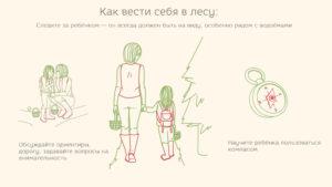 Правила поведения в лесу для детей