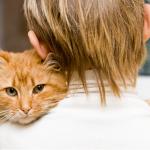 Что делать, если ребёнок обижает животных