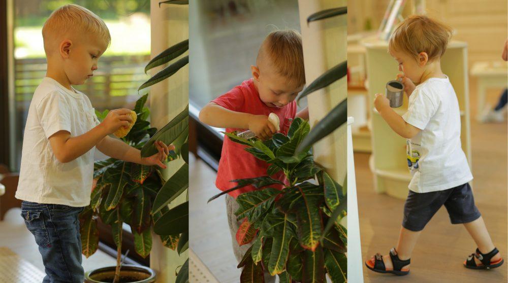 ребёнок ухаживает за растениями