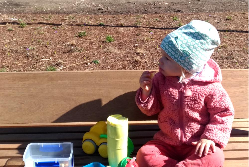 Родителям двухлеток: почему они такие «несносные»