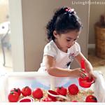 Как подготовить Монтессори-среду дляребёнка трёх лет