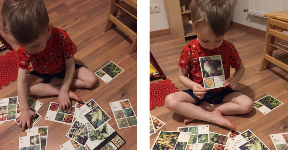 Карточки огородника