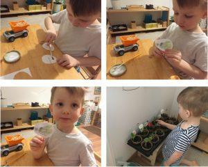 Ребёнок делает таблички с растениями