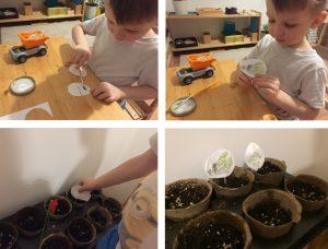 Ребёнок делает таблички с изображением растений