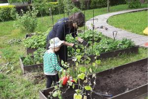 изучаем растения с ребёнком