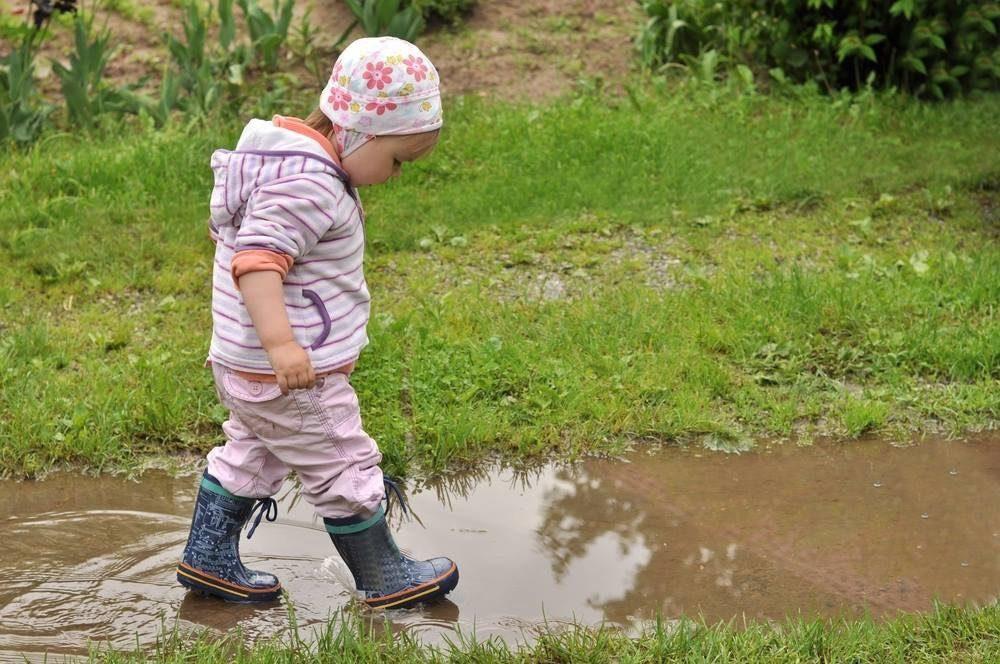 Лужи помогают изучить воду