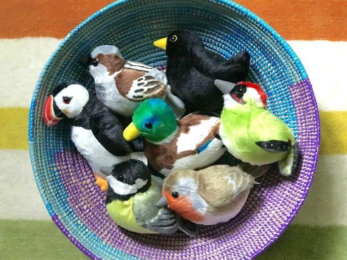 словарная коробочка с птицами