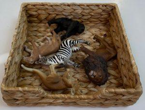 языковая коробочка с животными