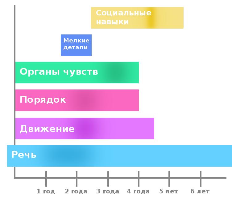 Схема сензитивных периодов