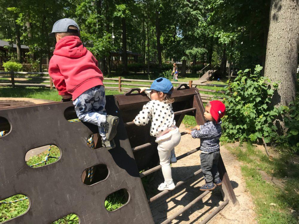 Сензитивный период движения: дети взбираются по лестнице