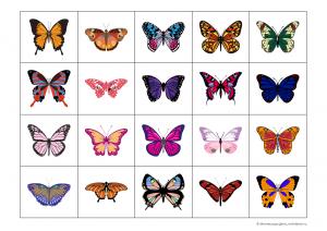 карточки с бабочками